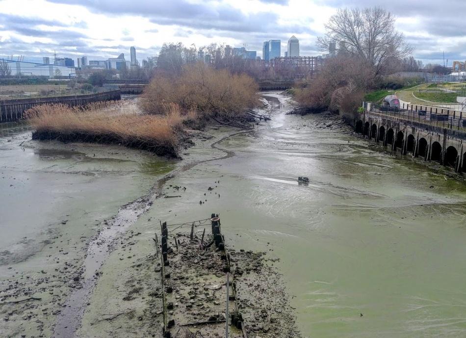 Channelsea River 2019