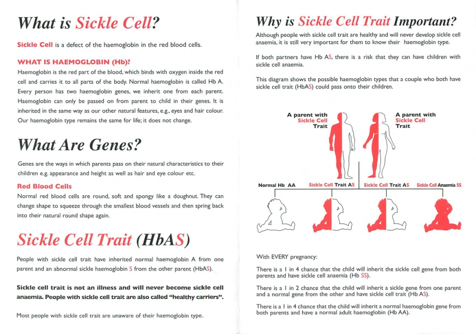 Sickle Cell and Thalassaemia centre